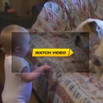 Cute Baby Argues With Dog