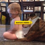 Dog Gives Baby A Tongue Bath