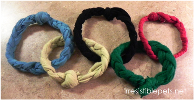 Homemade Olympic Ring Dog Toy