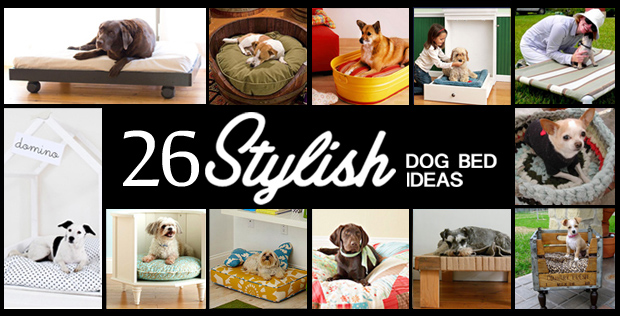 26 Stylish Dog Bed Ideas
